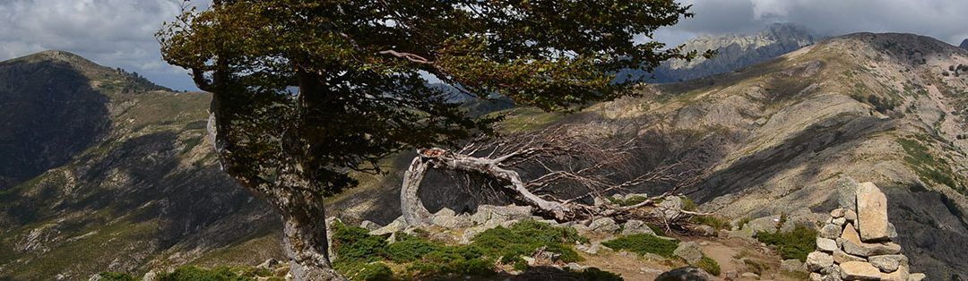 Le GR20, référence des randonnées en Corse