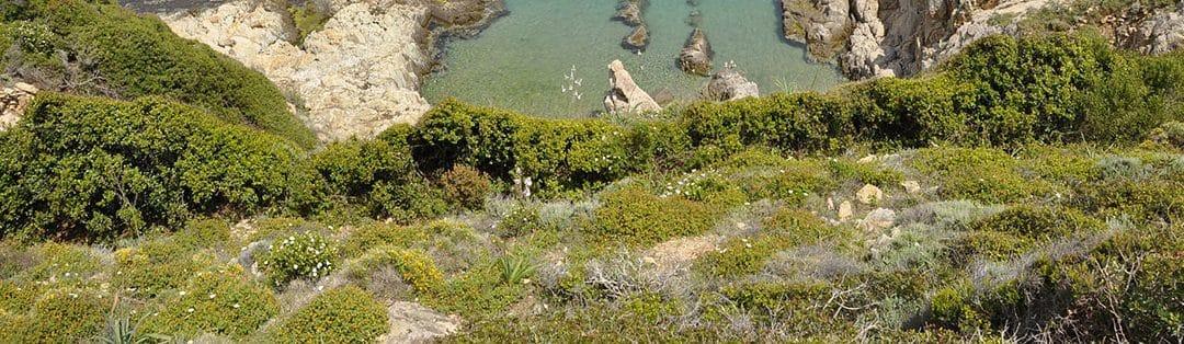 3 randonnées à faire en Corse