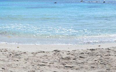 La plage d'Arone, un petit coin de paradis en Corse
